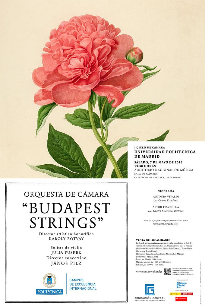 universidad politecnica de madrid  Budapest Strings en el I Ciclo de conciertos de Cámara de la Universidad Politécnica de Madrid